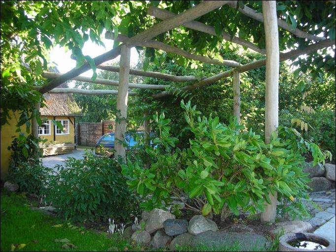 Orangeri - pergola