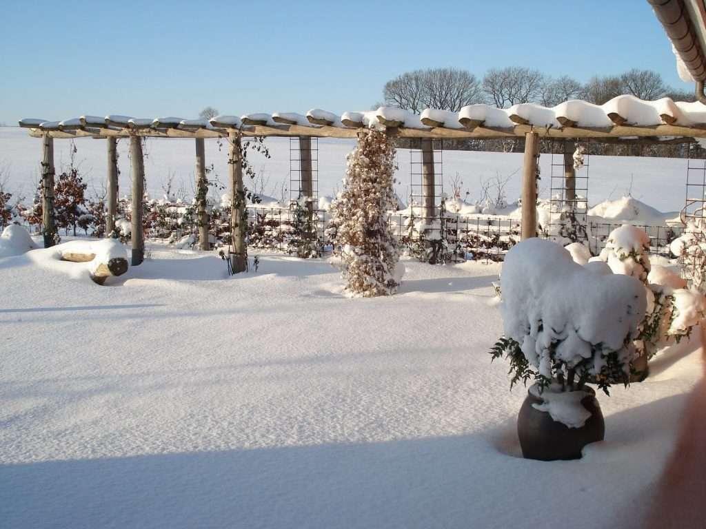 Pergola vinter - SkovTrup