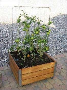 blomsterkasser - plantekasse