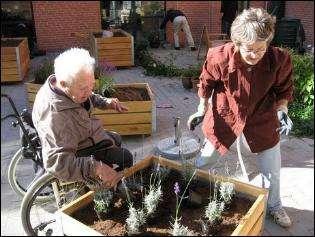 sansehave med planter