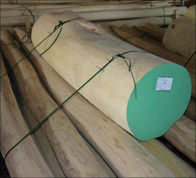 naturpæle splintfri kernetræs pæle