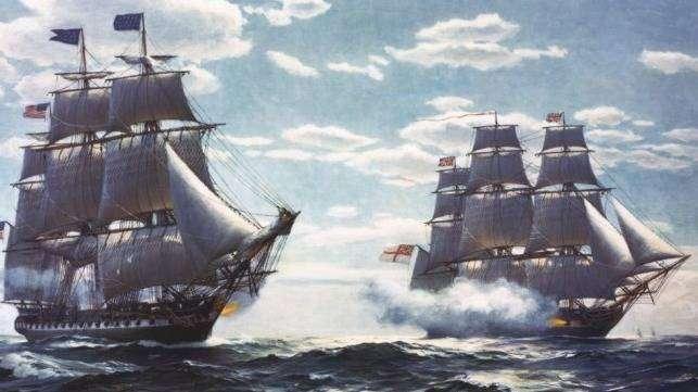 robinia pseudoacacia skib